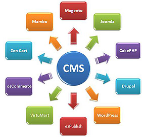 Content-Management-System_h270
